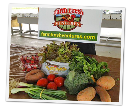 Farm Fresh Venture - Regional Food Hub NC